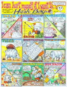 Hash Boy #13 I Can Hurt Myself if I Want To